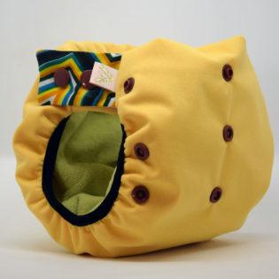 Couche ApiAfrique
